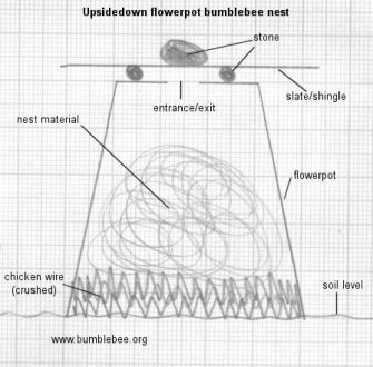 bumblebee nest box plan